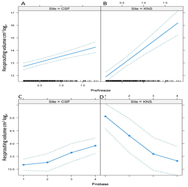 Predicted effects of the interactions between (A and B) pre-fire size and site, and (C and D) fire severity and site on the logarithm of post-fire resprouting volume of dune thicket shrubs.