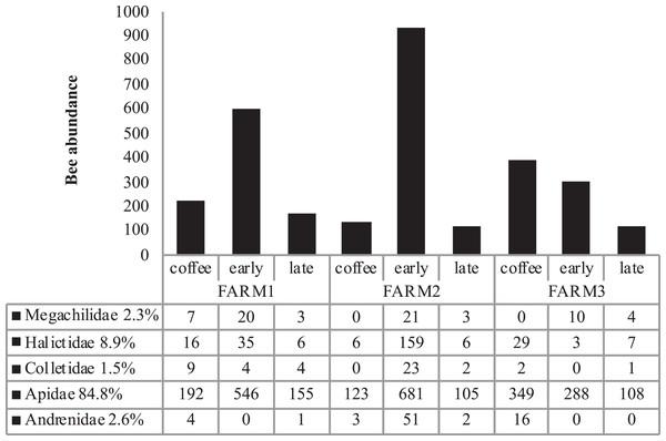 Total bee abundance per farm and vegetation type plots.