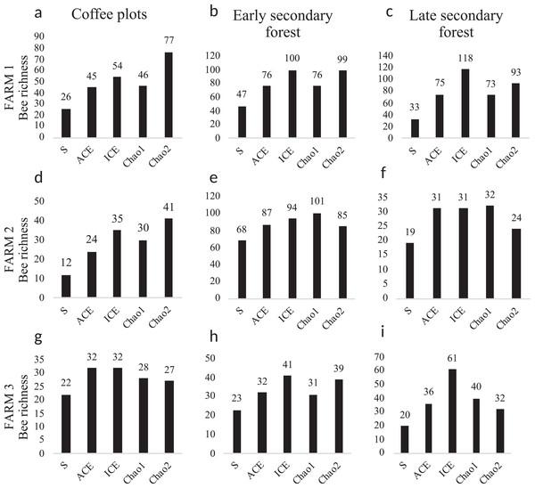 Bee diversity per farm and vegetation type.
