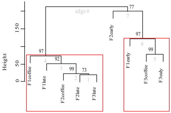 Dendrogram of bee species composition per farm and plot type.