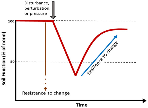 Simple model showing the effect of a perturbation on the resistance and resilience of a soil biological function or property.