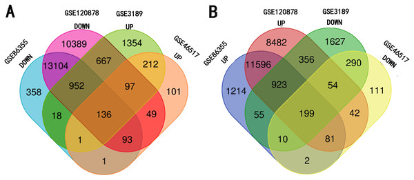 Identification of methylated-differentially expressed genes in gene expression datasets (GSE3189, GSE46517) and methylation expression datasets (GSE86355, GSE120899).