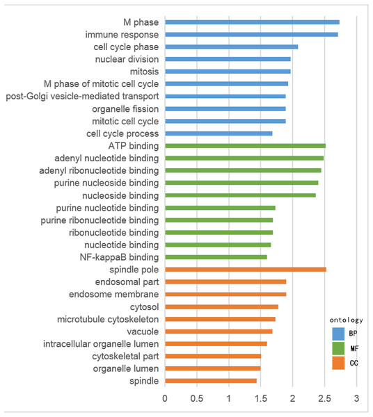 GO analysis of hypomethylation-high expression genes.