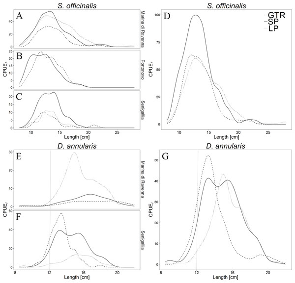 Length frequency distributions (LFDs) of Sepia officinalis in each site (A, B and C) and as a whole (D) and LFDs of Diplodus annularis in each site (E and F) and as a whole (G).