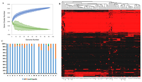 Analysis of the core and pan-genome of G. parasuis isolates.