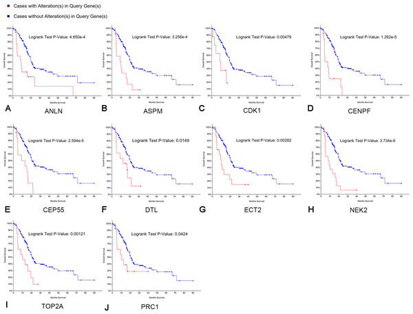 Overall survival analyses of hub genes performed using the cBioPortal online platform.