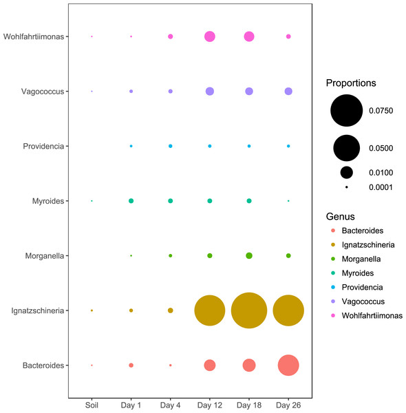 Abundance of genera associated with macroinvertebrates.