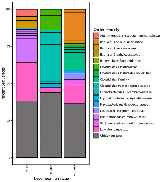 Bacterial communities of each stage of decomposition.