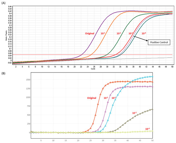 Analytic sensitivity of LDT and BD MAX System (A) In house LDT assay (B) BD MAX assay.