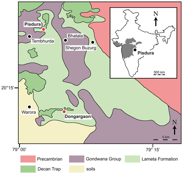 Detailed geological map of outcrops of the Lameta Formation south of Nagpur, Maharashtra, India (modified after Mohabey, Udhoji & Verma, 1993 and Khosla et al., 2016).