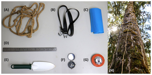 The field instrument utilized in this study to estimate the biomass of epiphytic bryophytes in tropical montane cloud forests of northeastern Taiwan.