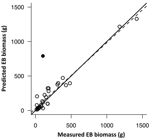 The comparison of model-predicted epiphytic bryophyte (EB) biomass and field-collected EB biomass.