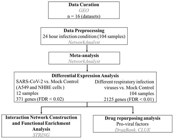 Work flow to identify host pro-viral factors and drug repurposing.