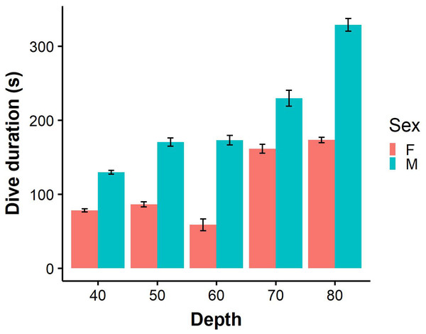 Dive durations of benthic dives (binned into 10 m intervals) performed by male (N=9) and female (N=7).