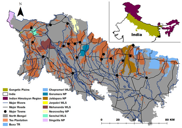 Study Area with the distribution of protected areas, rivers and towns.