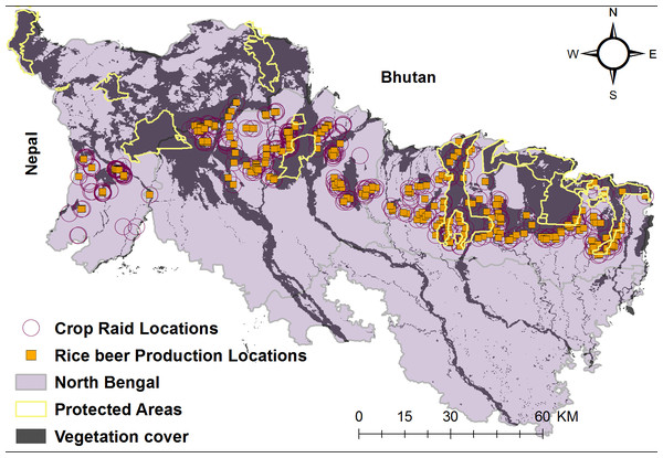 North Bengal landscape with the distribution of protected areas, rice beer production units and elephant crop depredation locations.