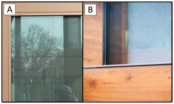 Bird-friendly windows including (A) fritted window and (B) Arnold Glas/ORNILUX bird protection glass.
