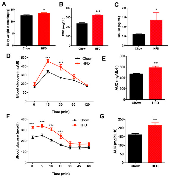 Impaired glucose metabolism in male offspring from HFD-fed dams at weaning.