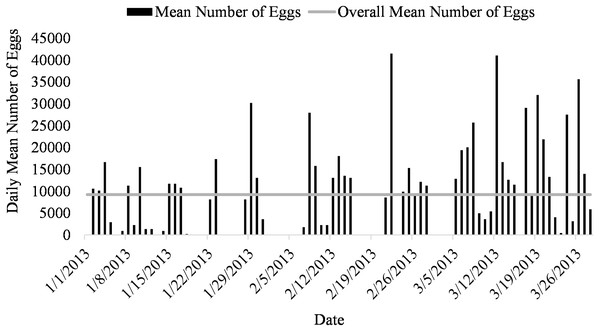 Daily mean number of eggs (black) and overall mean number of eggs collected (gray line) of Haemulon flavolineatum housed in five recirculating systems from January to March.