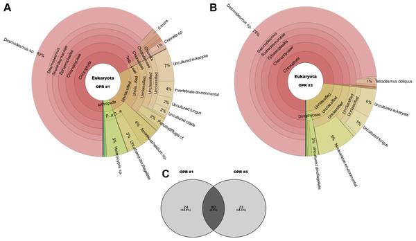 Krona graphs showing the average population of eukaryotic community.