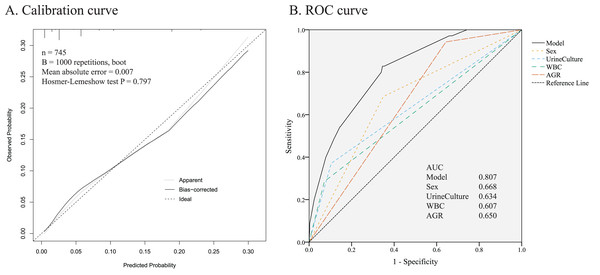 Evaluation of the predictive performance.