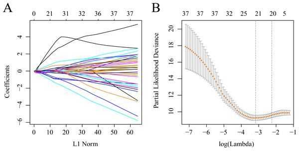 Establishment of gene signature related to AML prognosis by LASSO.