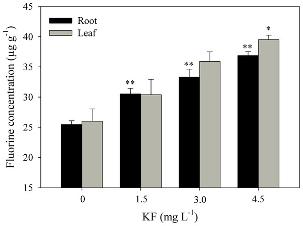 Fluoride content in Ricinus communis roots and leaves after 37 days of exposure to simulated rainfall containing KF.
