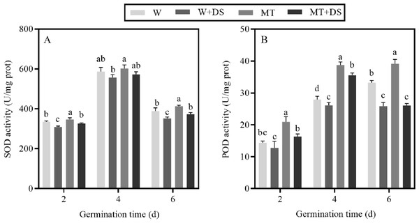 Effect of melatonin treatment on (A) superoxide dismutase (SOD) and (B) peroxidase (POD) activities of cotton seeds under drought stress.