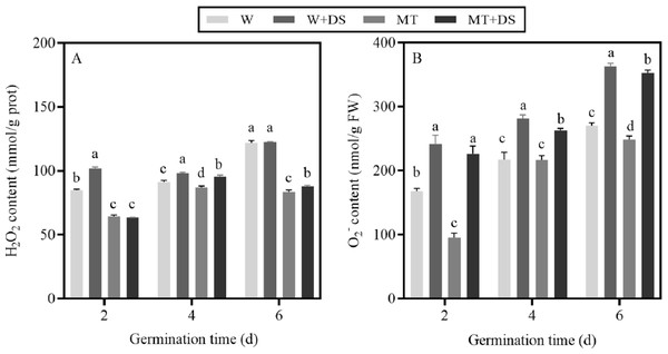 Effects of pre-treatment with melatonin on H2O2 (A) and O2- (B) content of cotton grown under drought stress conditions.
