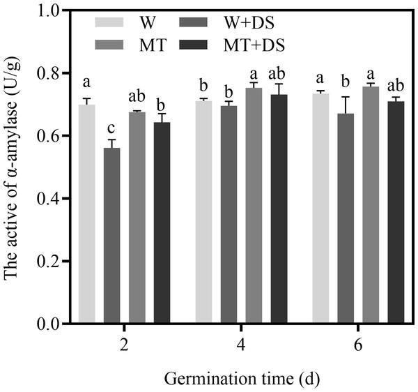 Effects of melatonin treatment on α-amylase activity of cotton under drought stress.