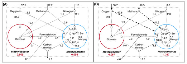 Flux distribution for select metabolites in Methylobacter and Methylomonas under (A) Lake Washington sediment-incubated microcosm conditions and (B) synthetic co-culture conditions.