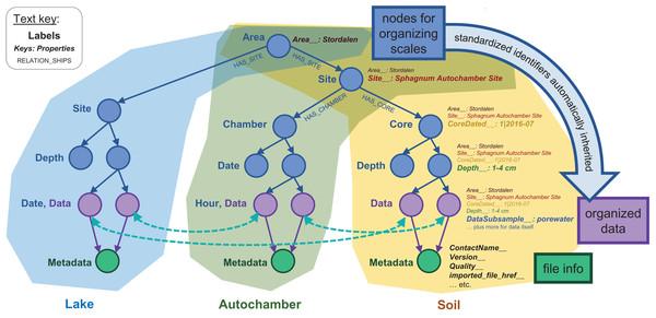 Basic node structure of the IsoGenieDB.