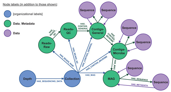 Database node structure for microbial sequencing data.