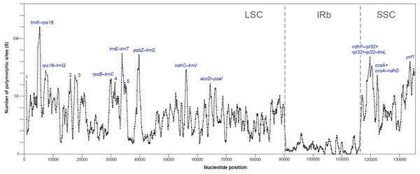 Sliding window analysis of polymorphic sites (S) for plastomes of 16 species of Acer (window length: 600 bp, step size: 100 bp).