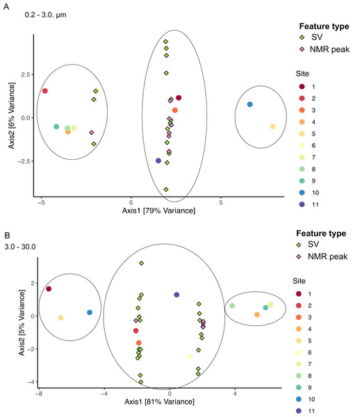 Sample groupings are driven by combinations of microbial taxa and chemical features.