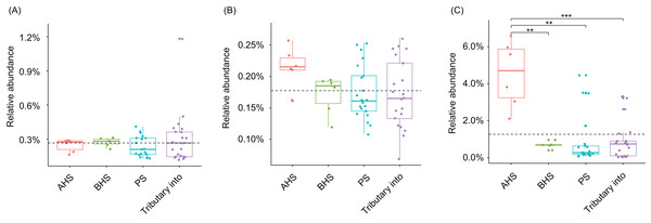 Relative abundances of Phormidium (A), Planktothrix (B), and Synechococcus (C), which were the major Cyanobacteria genera in the river water microbiota.
