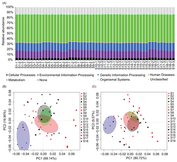 Metabolic characteristics of the river water microbiota predicted by the PICRUSt program.