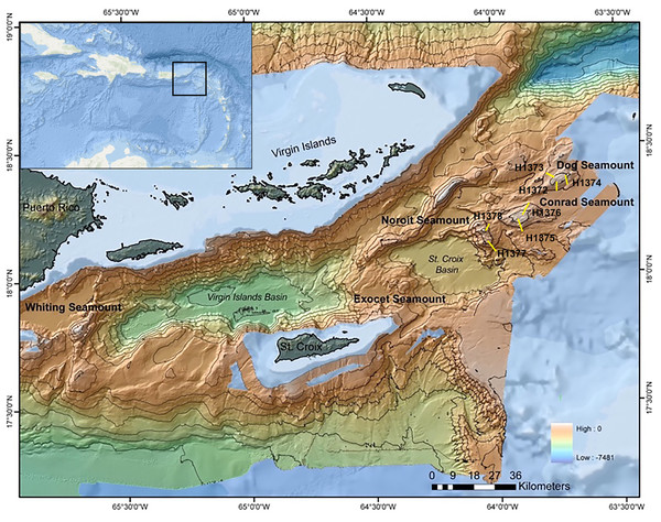 Multibeam bathymetric map of the Anegada Passage seamounts.