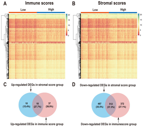 Comparison of gene expression profiles with immune scores and stromal scores in LUAD.
