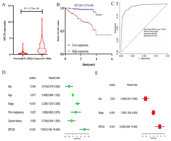 The validation of the expression levels and diagnostic and prognostic values of SPC25 in hepatocellular carcinoma in the International Cancer Genome Consortium cohort.