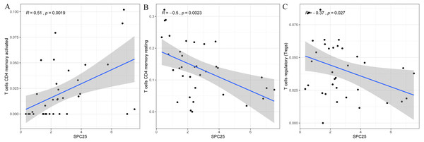 Scatter plot showed the correlation of activated CD4 T memory cells (A), regulatory T cells (B), and resting memory CD4 + T cells (C) tumor-infiltrating immune cells proportion with the SPC25 expression (P<0.05).