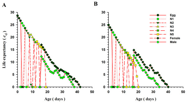 Age-specific life expectancy (exj) of O.strigicollis offered with whiteflies species.