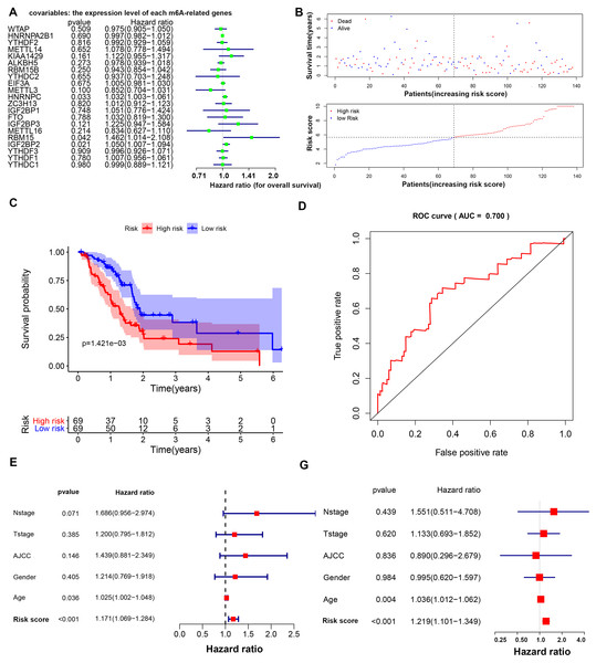 Prognostic model based on m6A-related genes with moderate accuracy in predicting overall survival in PAAD.