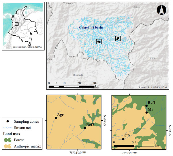 Study area and sampling zones located on the western slope of the central cordillera of the Colombian Andes, in the Chinchiná river basin (Caldas, Colombia).