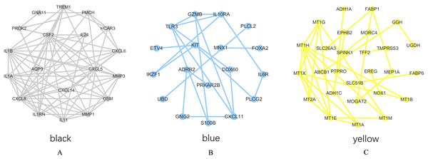 PPI network analysis results.