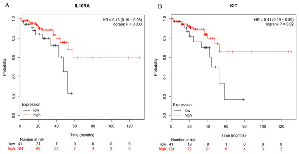 The expression level of two hub genes was significantly associated with prognosis (p-value < 0.05).