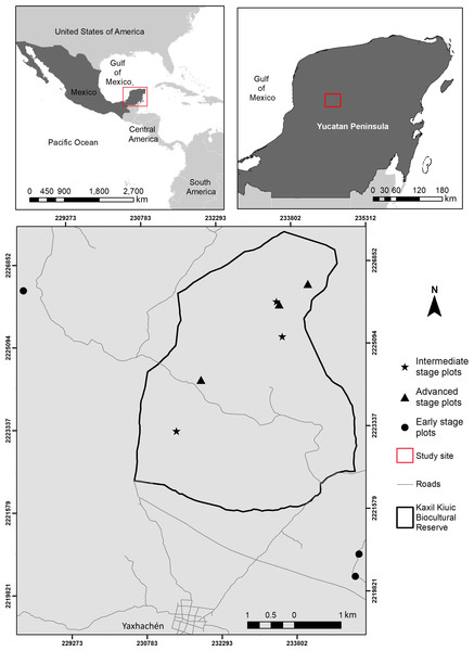 Location of the study area showing the spatial arrangement of sampling sites within and near Kaxil Kiuic Biocultural Reserve in the Yucatan Peninsula, Mexico, for each successional age category.