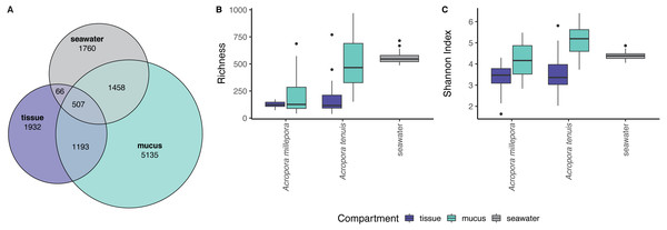 Alpha diversity measures of coral mucus, coral tissue, and seawater microbiomes.