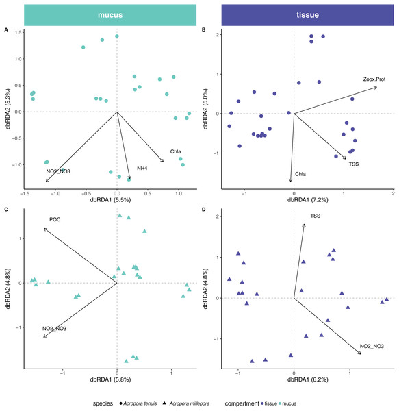 Environmental and physiological drivers of the Acropora tenuis and Acropora millepora microbiomes.