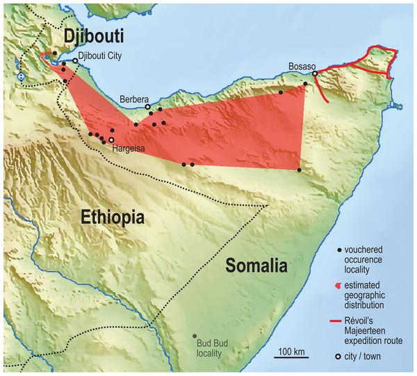 Vouchered occurrence localities of the Somali Sengi.